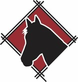 BraveHearts Equine Assisted Psychotherapy and Learning Logo