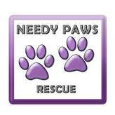 Needy Paws Rescue Logo