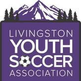 Livingston Youth Soccer Association Logo