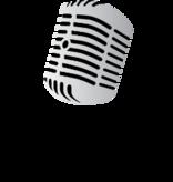 Radio Talking Book Service Logo