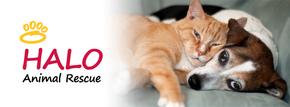 HALO Helping Animals Live On  Logo