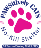 Pawsitively Cats, Inc Logo