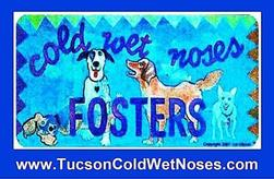 Tucson Cold Wet Noses Fosters, Inc. Logo