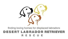 Desert Labrador Retriever Rescue, Inc. Logo