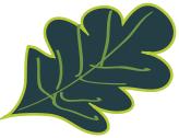 Doko Meadows Park Foundation Logo