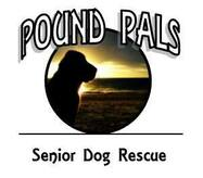 Pound Pals Classroom Canines  Logo