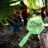 Teaching Responsible Earth Education (T.R.E.E.) Logo