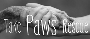 Take Paws Rescue Logo
